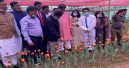শেখ হাসিনা থাকলে কৃষিবান্ধব সরকার থাকবে : প্রাণিসম্পদ মন্ত্রী